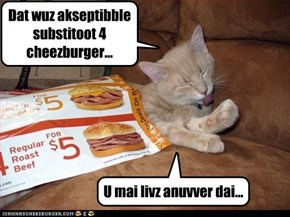 Dat wuz akseptibble substitoot 4 cheezburger...