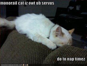 monorail cat iz owt ub servus  do to nap timez