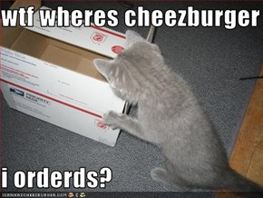 wtf wheres cheezburger  i orderds?