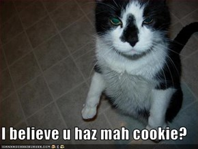 I believe u haz mah cookie?