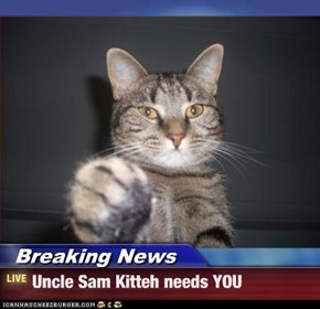 Breaking News - Uncle Sam Kitteh needs YOU