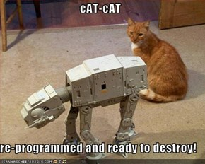 cAT-cAT  re-programmed and ready to destroy!
