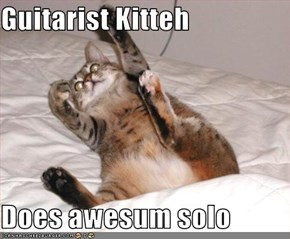 Guitarist Kitteh  Does awesum solo