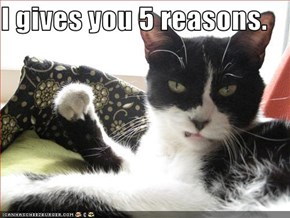 I gives you 5 reasons.