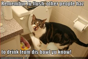Remembur tu flush, other people haz    to drink frum dis bowl yu know!