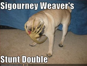 Sigourney Weaver's  Stunt Double