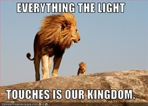 EVERYTHING THE LIGHT  TOUCHES IS OUR KINGDOM.