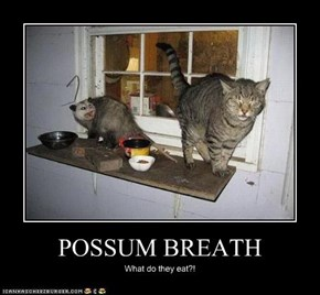 POSSUM BREATH
