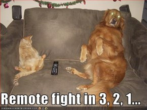Remote fight in 3, 2, 1...