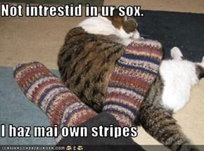 Not intrestid in ur sox.  I haz mai own stripes