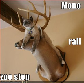 Mono rail  zoo stop