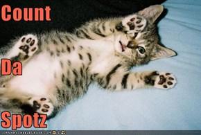 Count Da Spotz