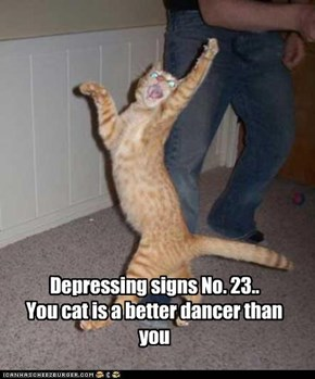 Depressing signs No. 23.. You cat is a better dancer than you