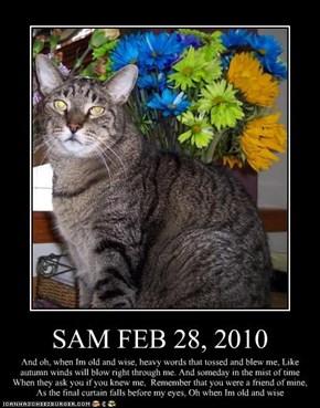 SAM FEB 28, 2010