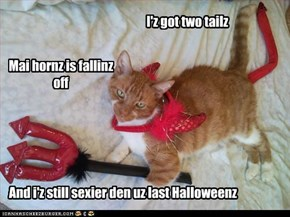 I'z got two tailz