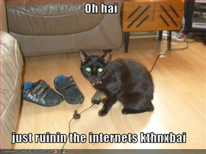 Oh hai  just ruinin the internets kthnxbai