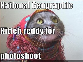 National Geographic Kitteh reddy for photoshoot