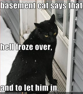 basement cat says that  hell froze over, and to let him in.