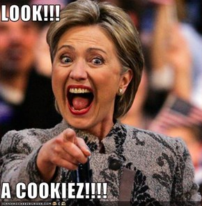 LOOK!!!  A COOKIEZ!!!!