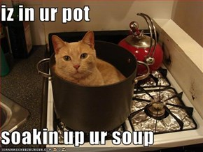 iz in ur pot  soakin up ur soup