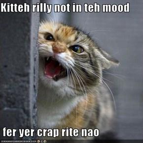 Kitteh rilly not in teh mood    fer yer crap rite nao