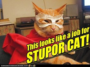 This looks like a job for STUPOR CAT!
