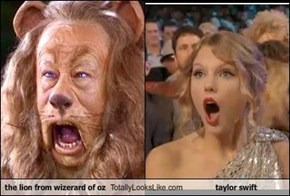 the lion from wizerard of oz Totally Looks Like taylor swift