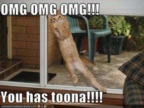 OMG OMG OMG!!!  You has toona!!!!