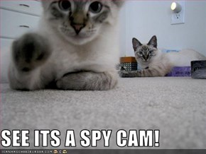 SEE ITS A SPY CAM!