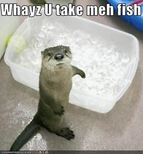 Whayz U take meh fish