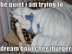 be quiet i am trying to  dream bout cheezburger