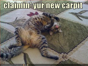 claimin' yur new carpit