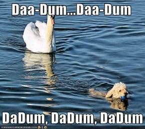 Daa-Dum...Daa-Dum     DaDum, DaDum, DaDum
