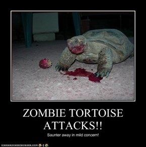ZOMBIE TORTOISE ATTACKS!!