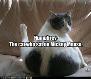 Humphrey: The cat who sat on Mickey Mouse.