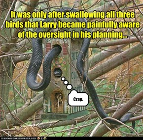 It was only after swallowing all three birds that Larry became painfully aware of the oversight in his planning...