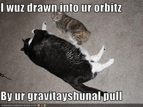 I wuz drawn into ur orbitz  By ur gravitayshunal pull