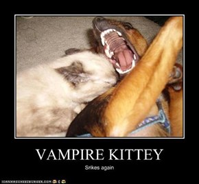 VAMPIRE KITTEY