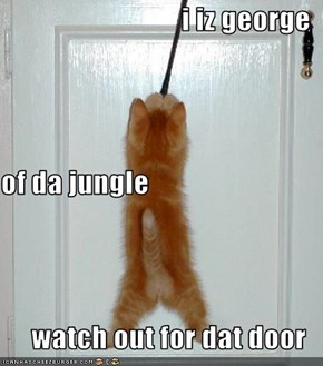 i iz george of da jungle watch out for dat door