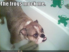 The frogs mock me.