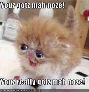 Youz gotz mah noze!  Youz really gotz mah noze!
