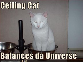 Ceiling Cat  Balances da Universe