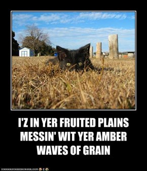 I'Z IN YER FRUITED PLAINS MESSIN' WIT YER AMBER WAVES OF GRAIN