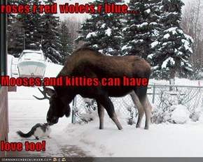 roses r red violets r blue.... Mooses and kitties can have love too!