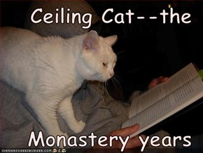 Ceiling Cat--the  Monastery years
