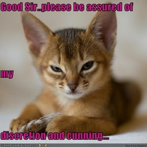 Good Sir..please be assured of my  discretion and cunning...