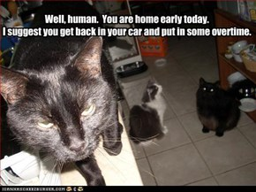 Well, human.  You are home early today. I suggest you get back in your car and put in some overtime.