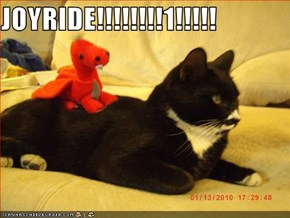 JOYRIDE!!!!!!!!1!!!!!