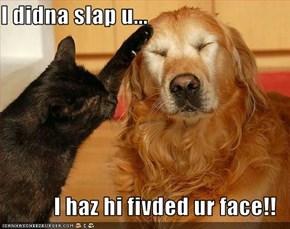 I didna slap u...   I haz hi fivded ur face!!