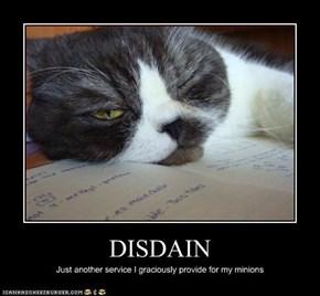 DISDAIN